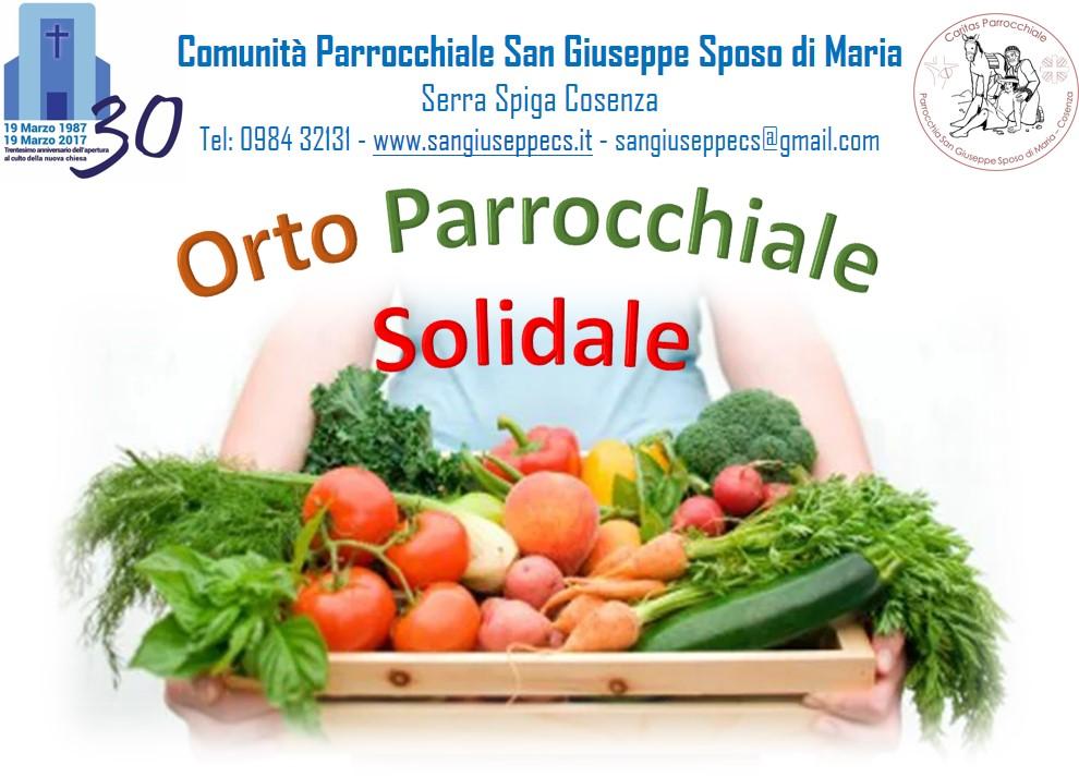 OrtoSol1
